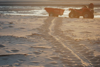 29 August, 2012 - 18:43 - Rangers patrol to count turtle nesting tracks and monitor nests