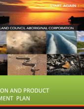 Tourism: Destination and Product Development Plan